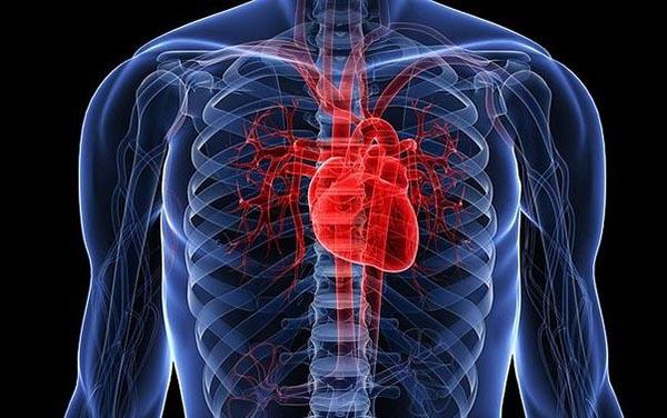 Стенозы сердечных сосудов сердца, симптомы и лечение народными методами